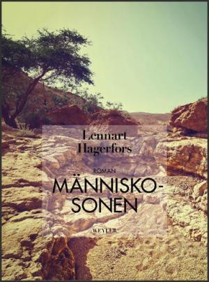 s-manniskosonen-2